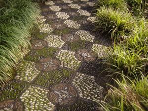 красивые дорожки для сада