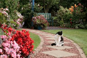 как оформить сад