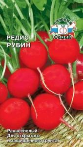 редис рубин