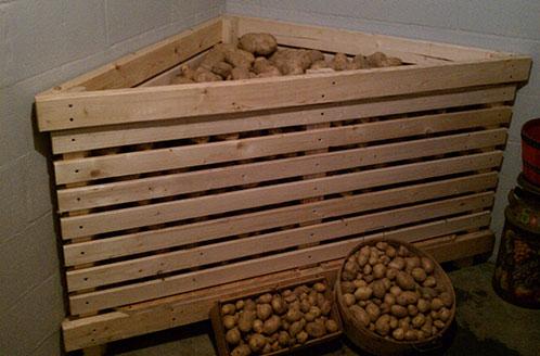 способы хранения овощей в погребе