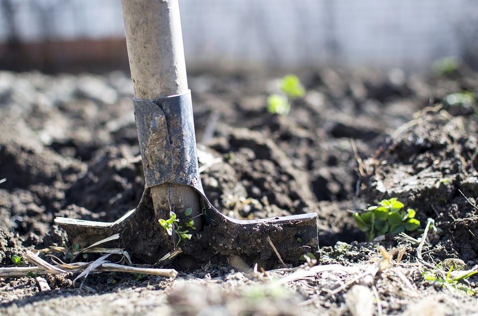 копать осенью почву надо или нет