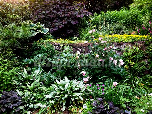ступенчатый сад