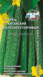 Лучшие сорта огурцов для открытого грунта отзывы