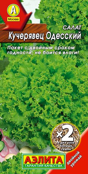 сорта салата листового