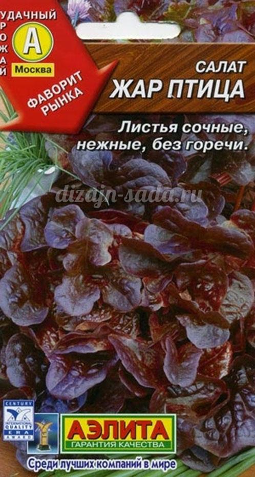Сорта салата без горечи с