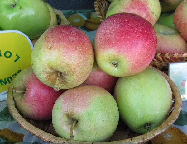 Как называется красное яблоко