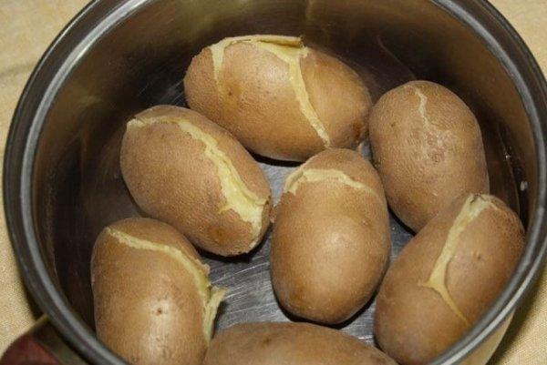 картошка сорт киви фото