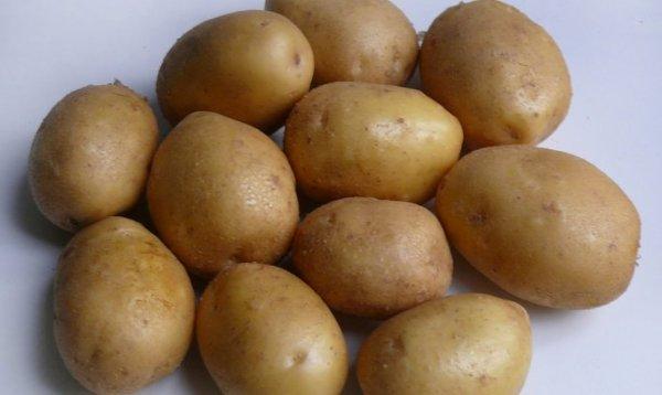 картофель джелли фото
