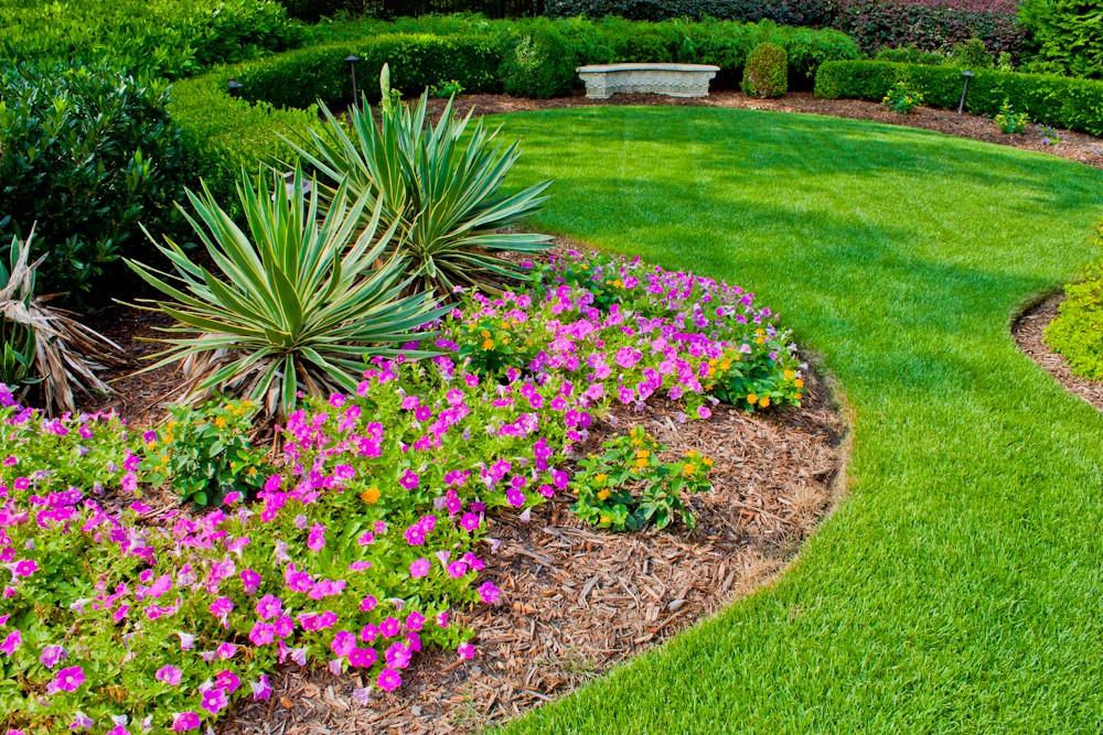 фото красивых клумб в саду это