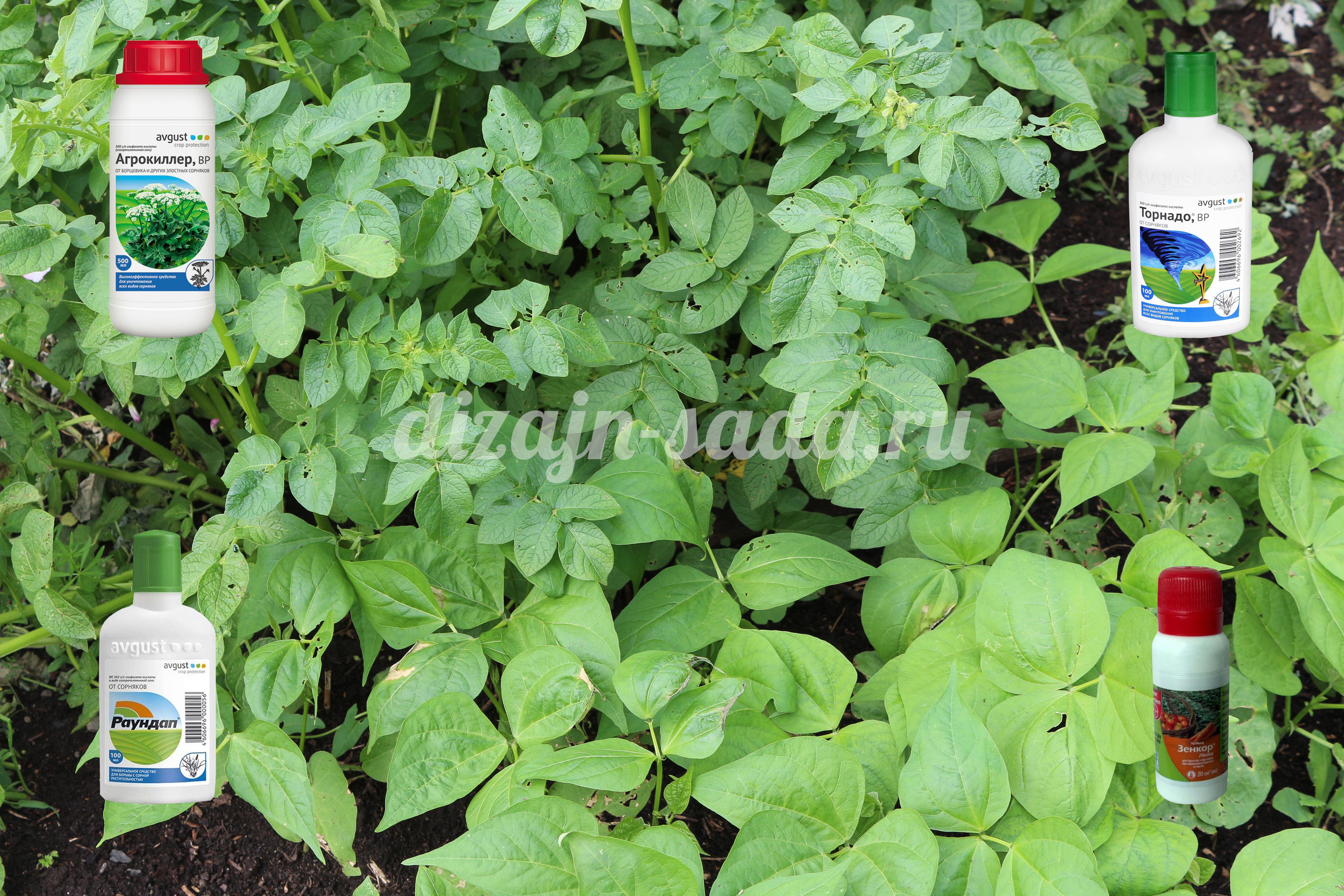 гербициды описание отзывы