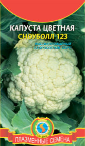Лучшие сорта цветной капусты для открытого грунта