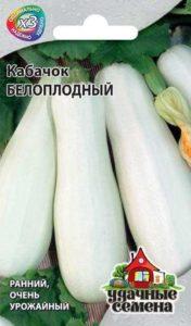кабачок белоплодный фото
