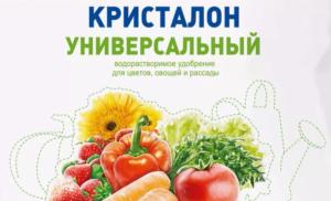 Акварин для рассады овощей 5
