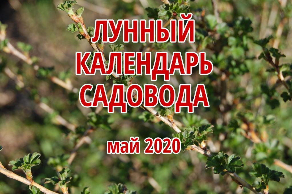 посевной календарь на май 2020 года