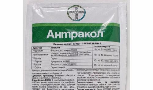 препарат антракол от фитофторы
