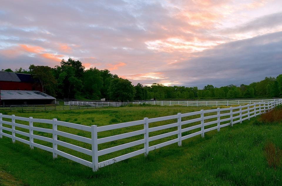 забор для дачи типа Ранчо