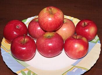 Сорт яблони Карповское