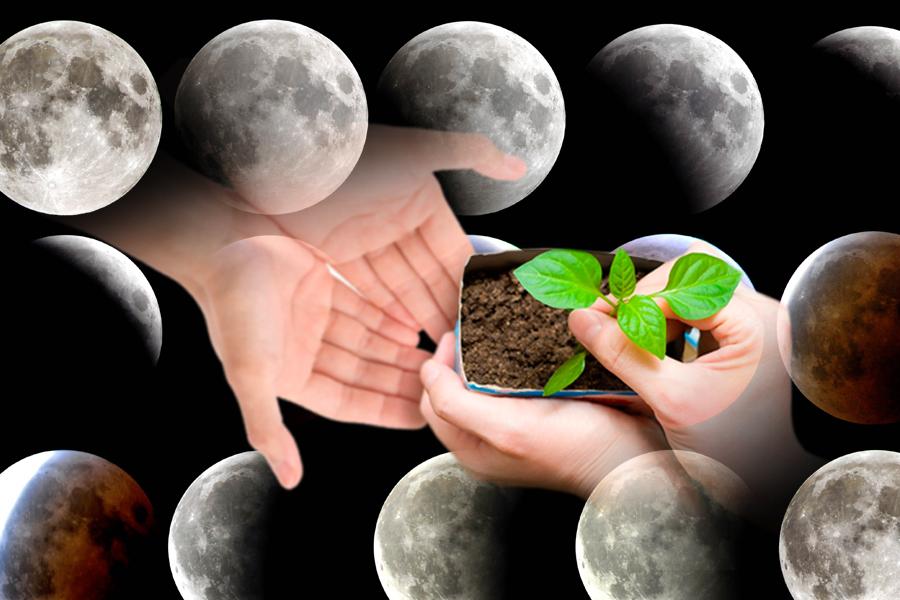 лунный календарь для сибири 2018 год