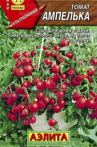 томаты ампелька фото отзывы