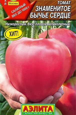 помидор знаменитое бычье сердце фото отзывы