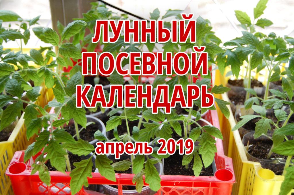 календарь посадок на апрель 2019 таблица