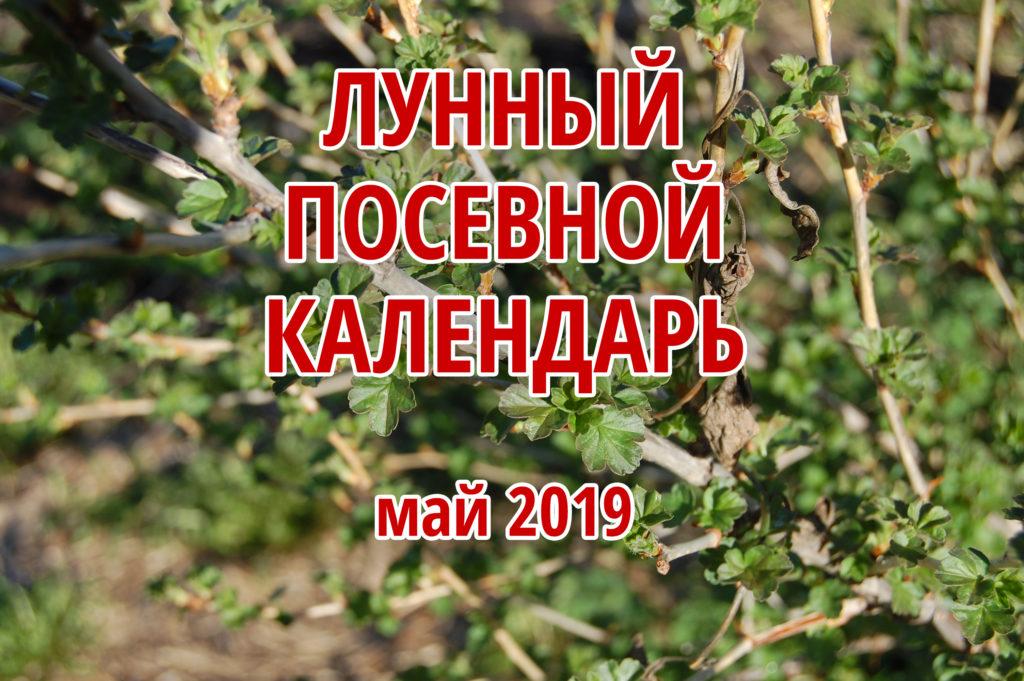 посевной календарь на май 2019 года