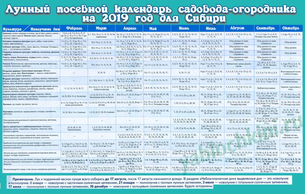 календарь посадок для сибири на 2019 год