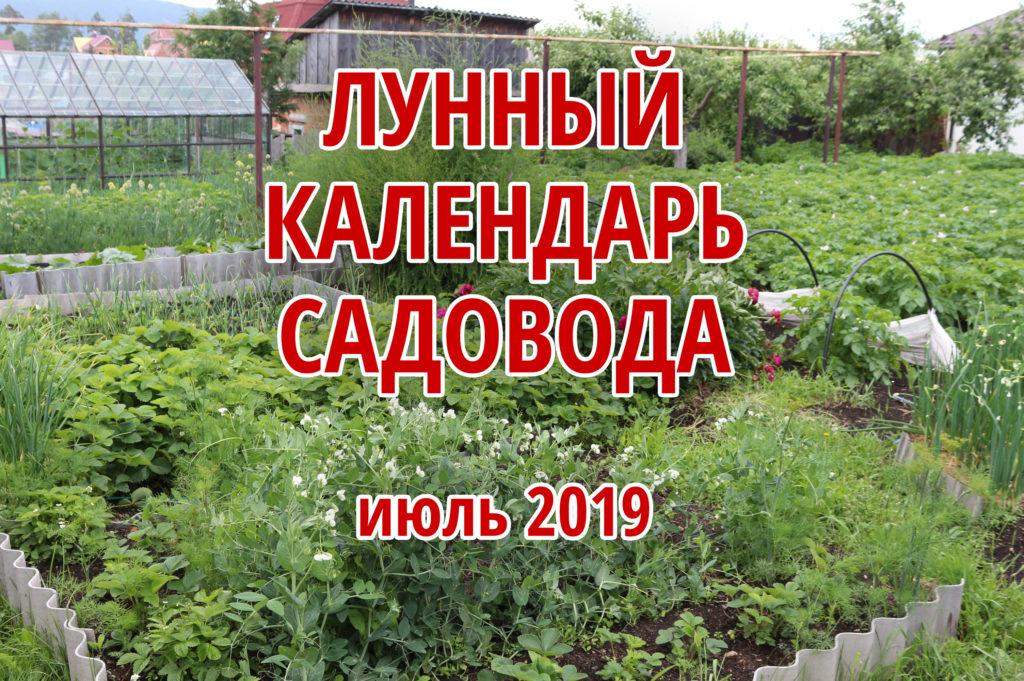 лунный календарь садовода июль 2019 года
