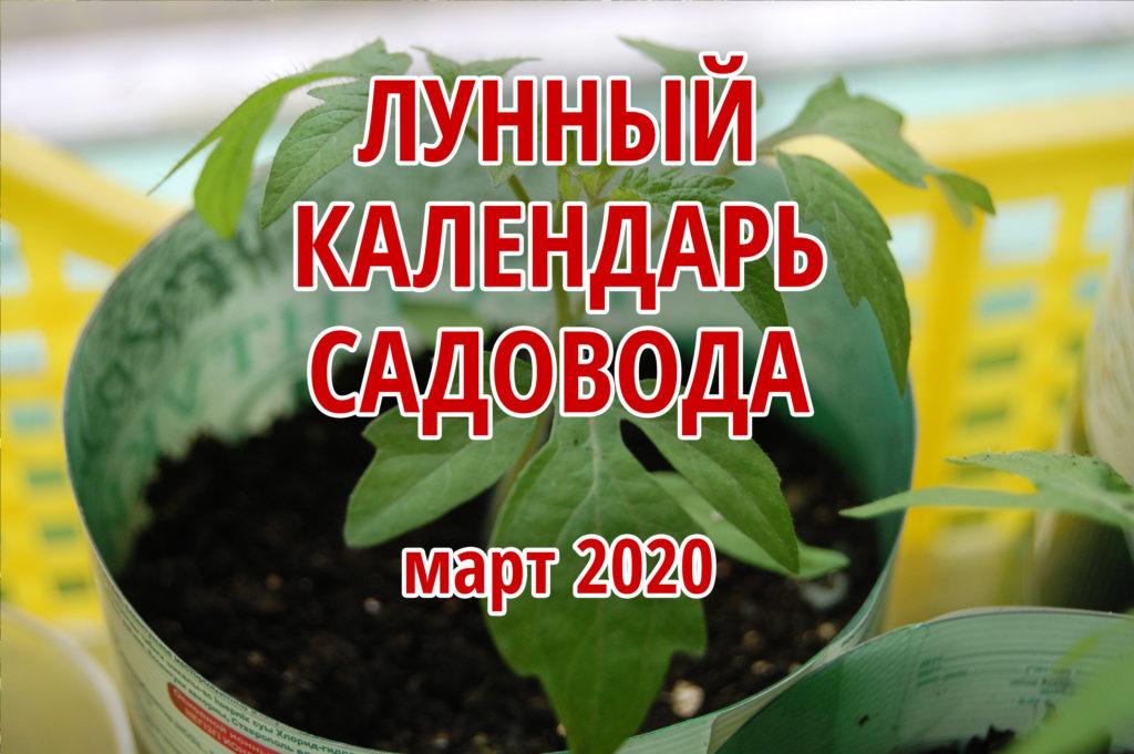 лунный календарь садовода март 2020
