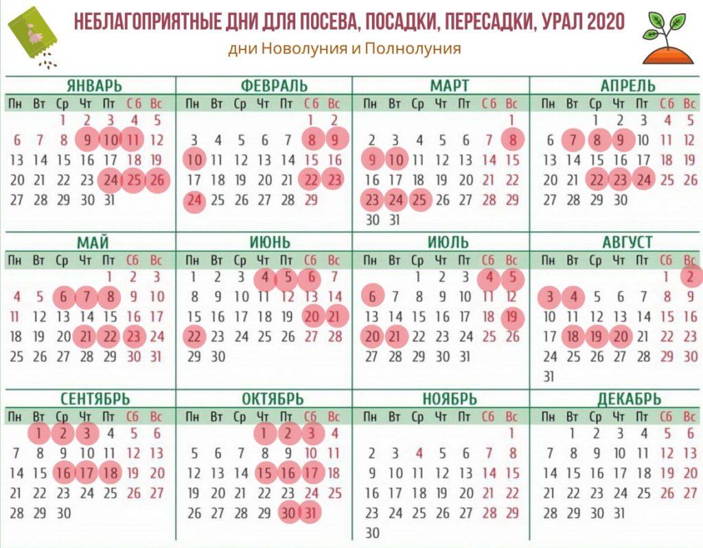 Лунный посевной календарь для Сибири и Урала на 2020 год