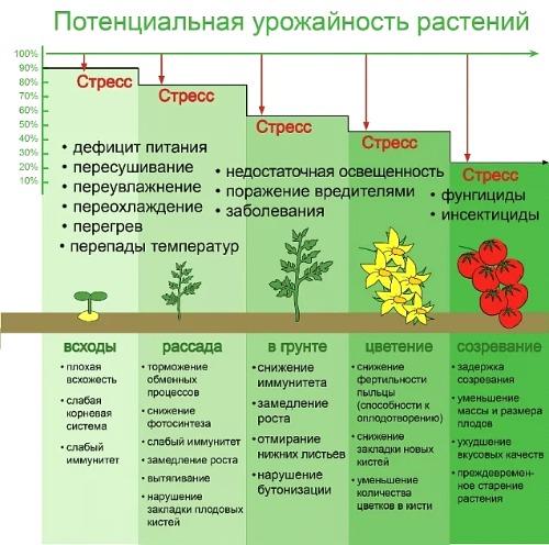 антистресс для растений