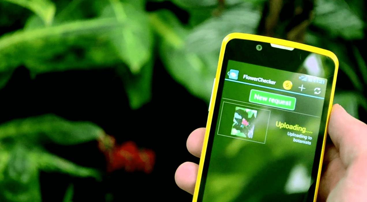 Лучшие мобильные приложения для садоводов и огородников